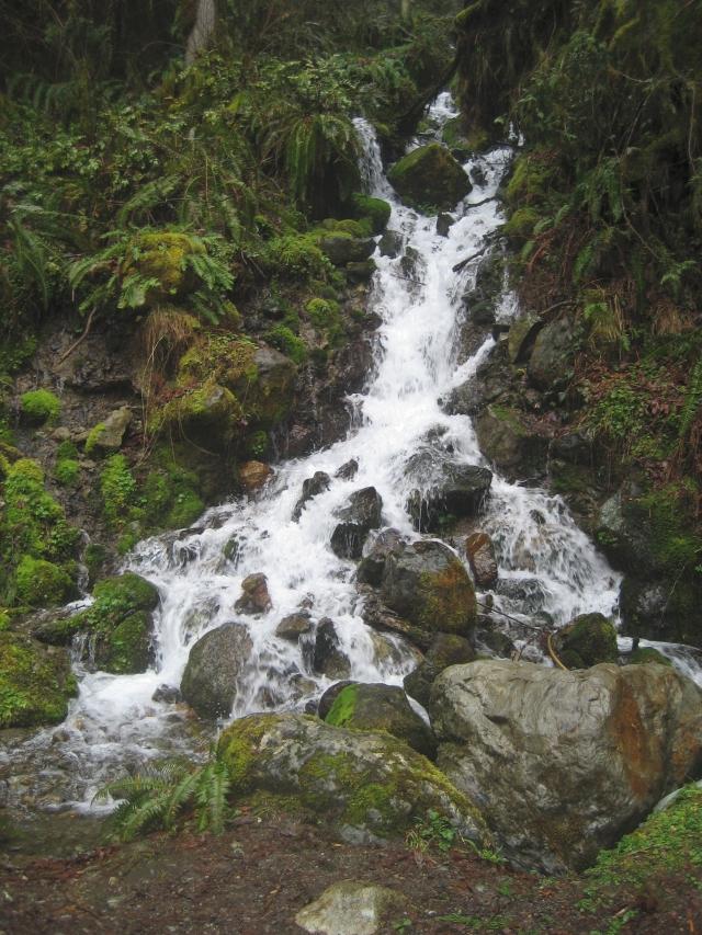 Double-Log Falls