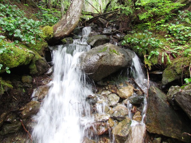 Falls on the McClellan Butte Trail by Tommia Wright