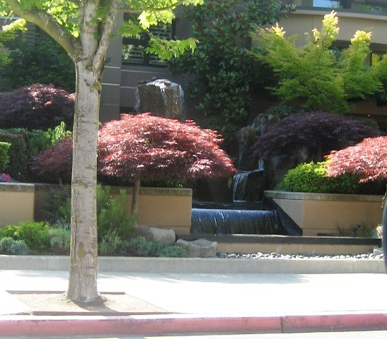 Fun Fountain in Kirkland by Tommia Wright