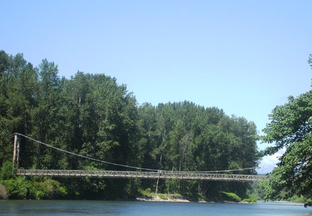 Tolt MacDonald Suspension Bridge by Tommia Wright