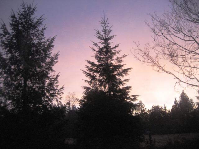 D-Sunrise
