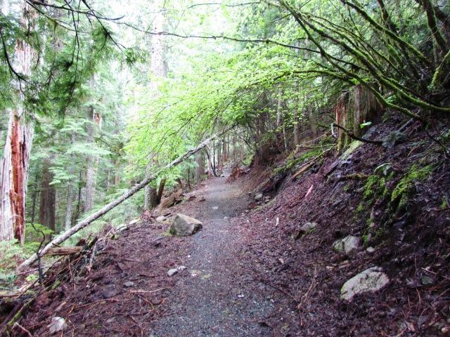 McClellan Butte Trail
