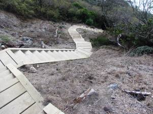Steps to Shore