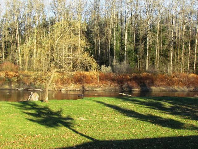 River Park in November