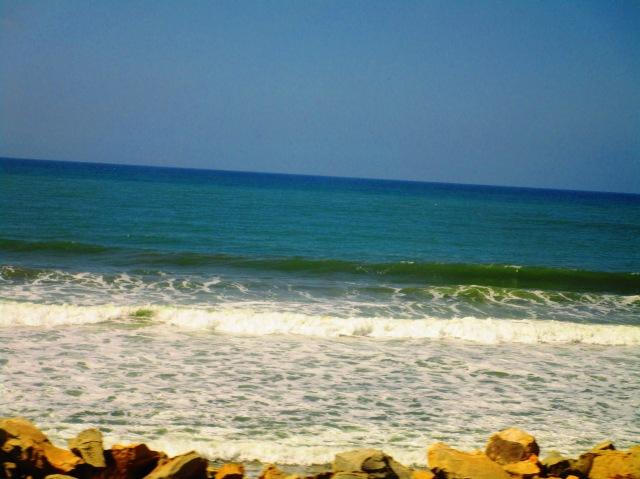 California Shore, Too