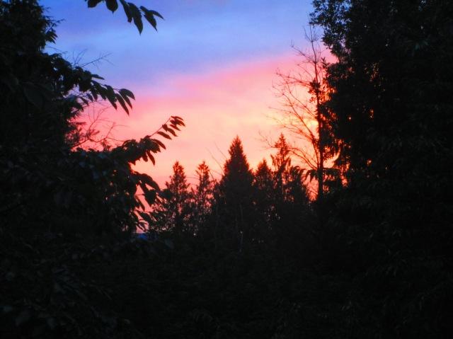 Sunset 8215