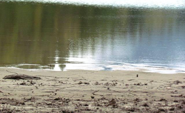 Rattlesnake Lake 2015