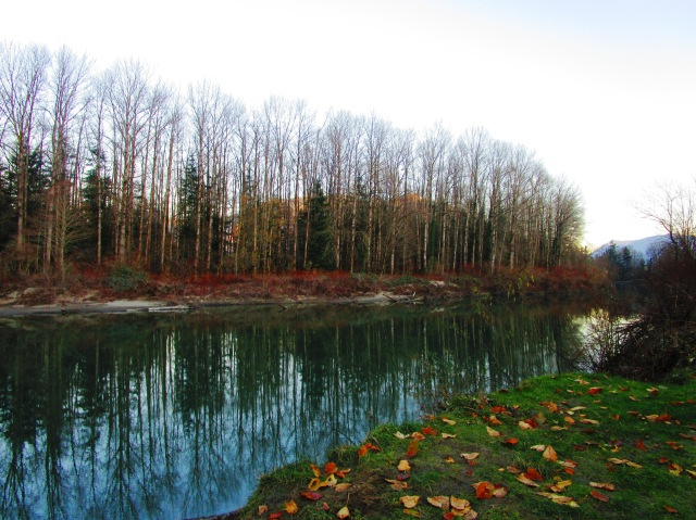 On the Snoqualmie River 2015