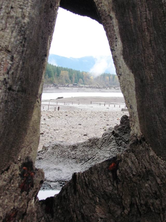 Wooden Framed Lake 2015