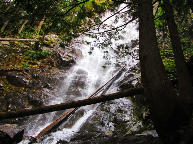 Return to Teneriffe Falls 2.7.16