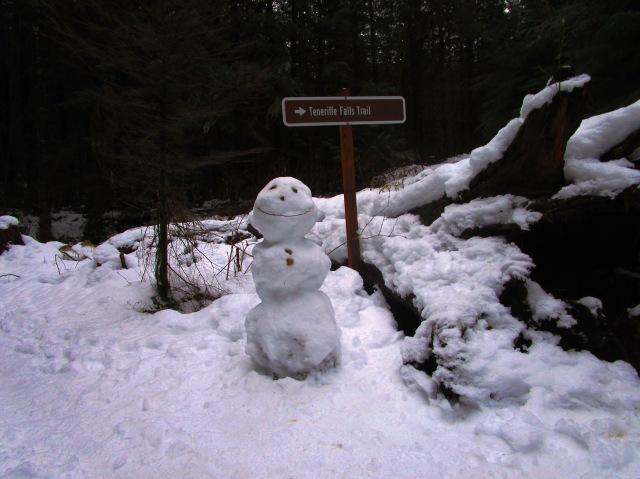 Snowhiker in December