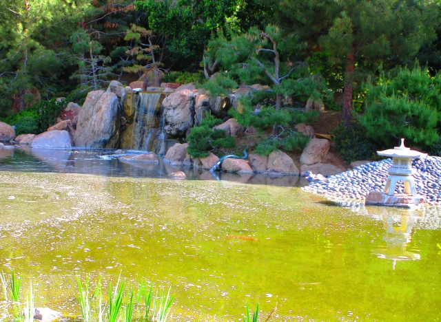 Japanese Friendship Garden.JPG