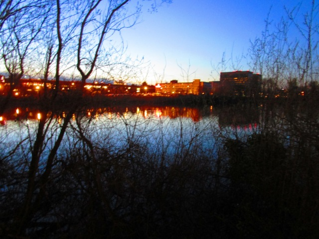 Night on the Lake.JPG