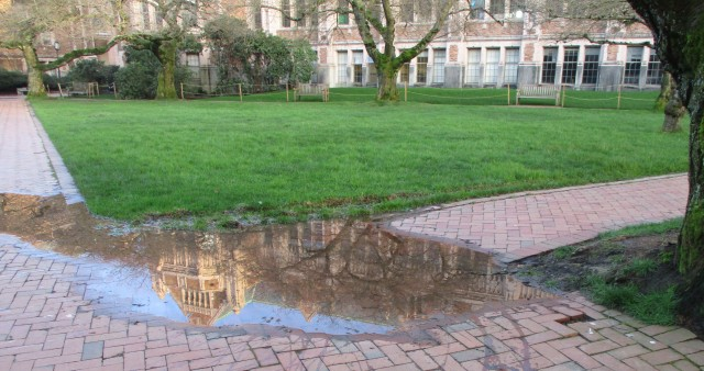 Reflections in the UW Quad 2.2020